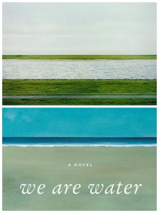 Recently Updated1 225x300 Cover designs inspired by art: Wally Lambs We Are Water and Rhein II by Andreas Gursky